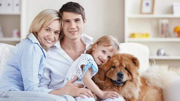 Wills & Trusts dog-young-family Direct Wills Greenwich